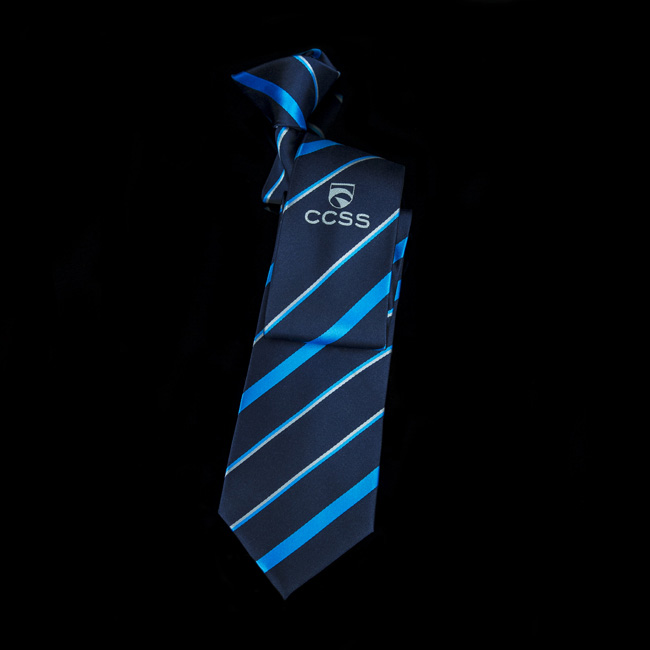 School ties school uniform ties bespoke school ties btt school logo tie ccuart Gallery